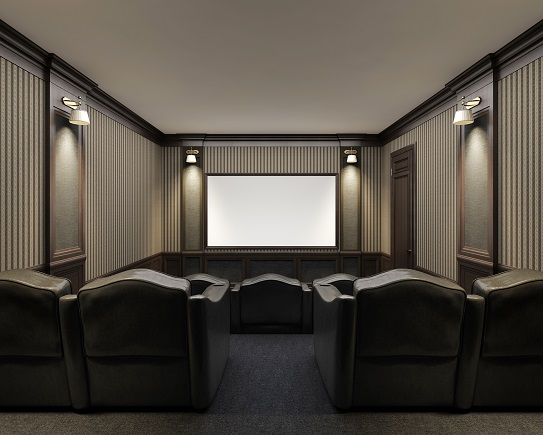Projector or TV in a Media Room